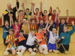 Primary 6 and 7 After School Hurling