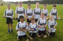 P6/7 Hurling and Camogie Blitz