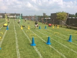 P1 obstacle course